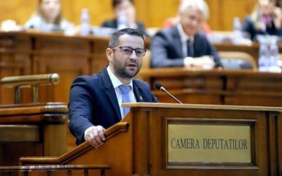 Ultima preocupare a PSD este bunăstarea românilor